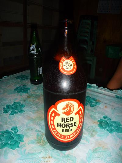 red horce.jpg